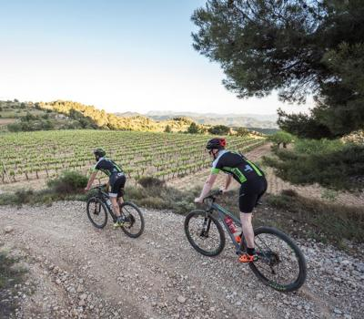 Priorat Bike Experiences